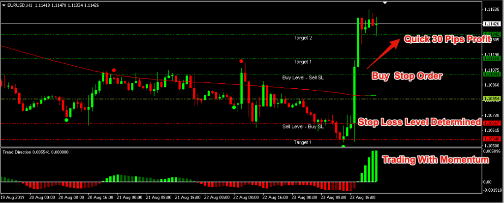 Forex Pips Master Premier Review - Trade Example
