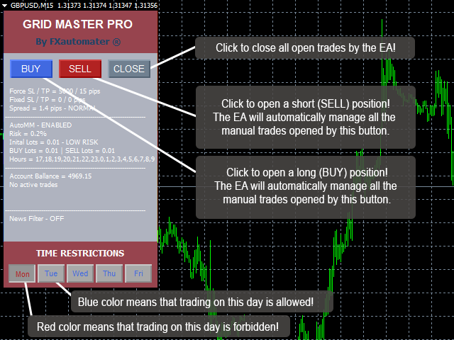 Grid Master Pro Review - EA Overview