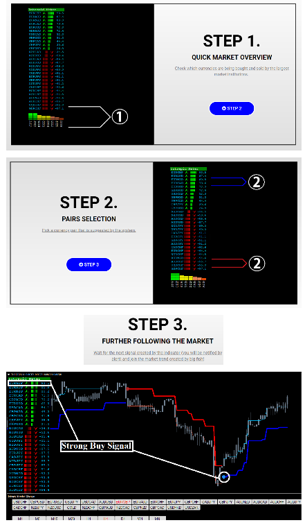 Forex Intrepid Strategy Review - Steps