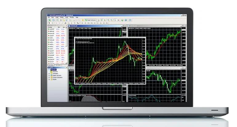 Friedberg Direct Review - MetaTrader 4 Platform