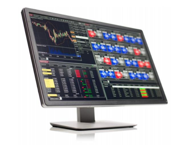 Friedberg Direct Review - Ninja Trader Platform
