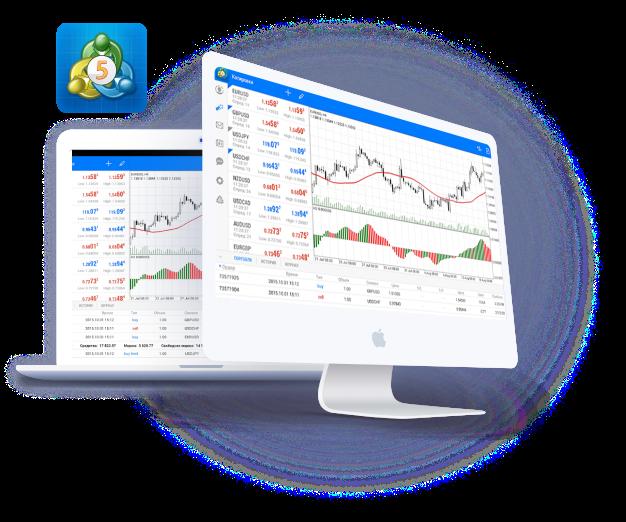 NSBroker Review - MetaTrader 5 Trading Platform