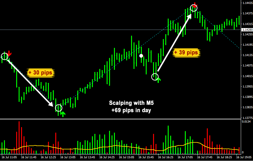 Daily Pips Hunter Review Trade Example