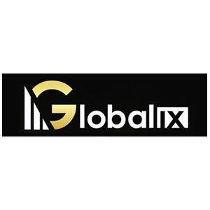 Globalix Logo