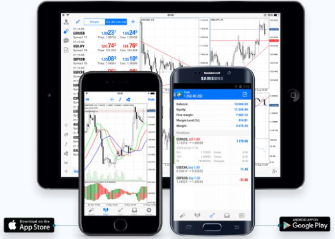 Primexq Review MT4 Platform
