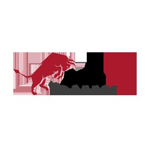 BullsEye Markets Logo