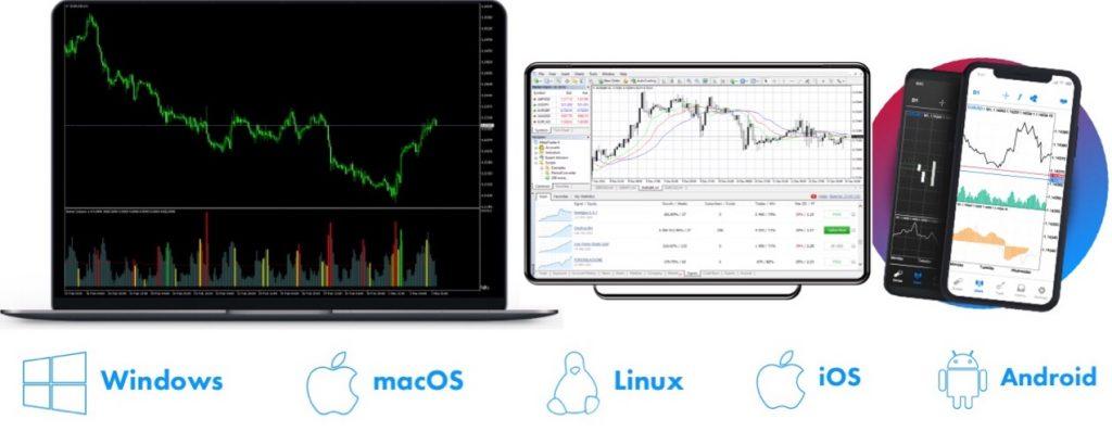 SquaredFinancial Review Trading Platform