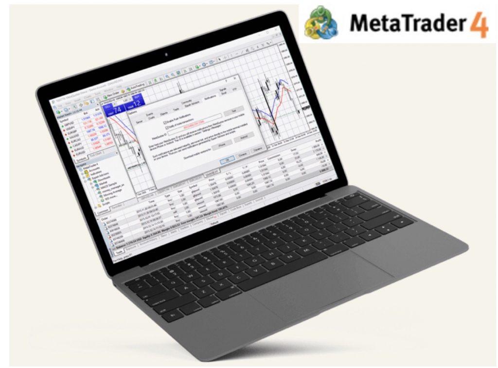 STForex Review Trading Platform